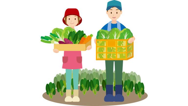 農家と野菜