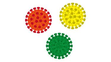 新型コロナウイルス(COVID-19)と糖質制限の関係性、その有効性について【予防・治療・免疫力】