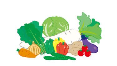 糖質制限と『ビタミン』の摂取について