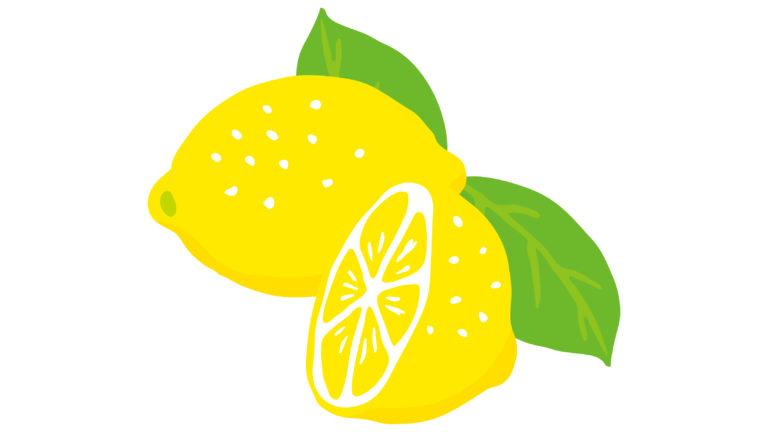 レモンイラスト